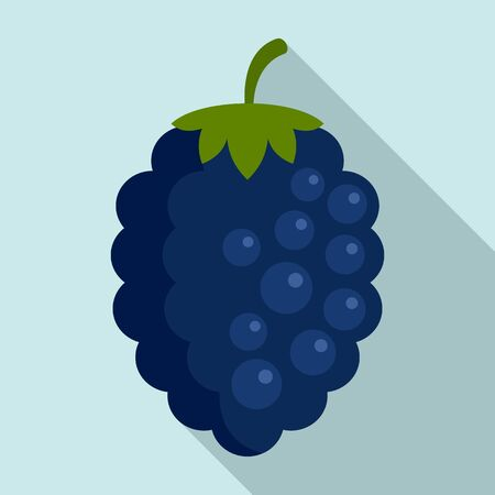 Natural blackberry icon, flat style 向量圖像