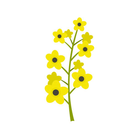 Rape plant icon, flat style