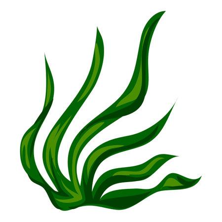 Aquarium algae icon, cartoon style