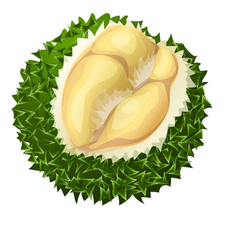 Creamy durian icon, cartoon style