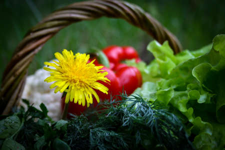 good food: Fresh vegetables in a basket on a nature background