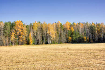 Autumn landscape sloping meadow on a background of forest and mountains Ural Russia
