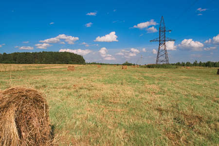 Stacks of straw - bales of hay, rolled into stacks left after harvesting of wheat ears, agricultural farm field with gathered crops rural.