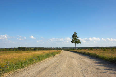 Summer countryside on a hot summer day in August Stock Photo