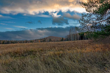 Autumn landscape with dried grass in the meadow on the background of forest and sunset sky Foto de archivo