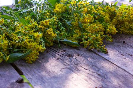 Fresh yellow flowers Hypericum on the old table close-up.