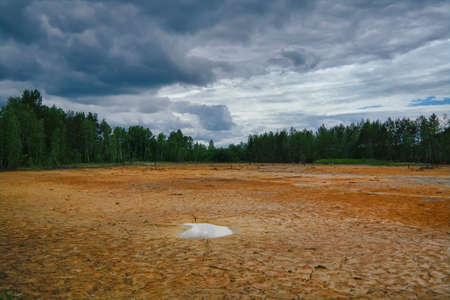 Landscape of marshland against a cloudy sky. Wetland against a cloudy sky and forest on the horizon. Stockfoto