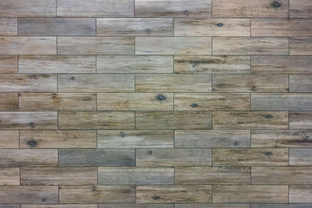 The texture of ceramic tiles stylized as a light wood. Ceramic tile with texture gray tree. Banque d'images