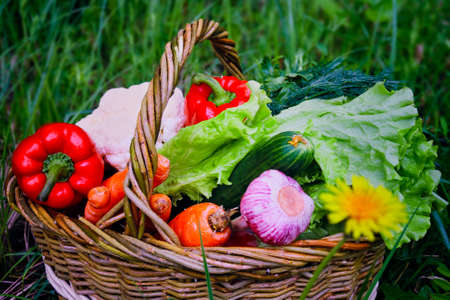 Wicker basket with fresh natural vegetables on a background of green lawn.