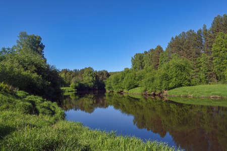 Summer landscape, forest trees are reflected in calm river water against a background of blue sky. 免版税图像