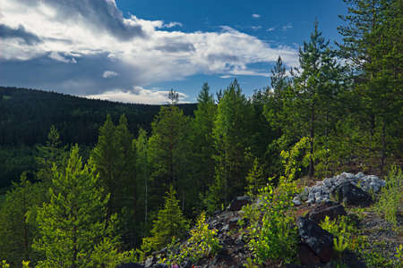Summer landscape in the mountains on a background of forest and cloudy sky. Stock fotó