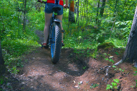 A young woman rides along a forest path on a fat bike on a sunny summer day. Stock fotó