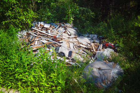 Unauthorized landfill in the forest. Bad ecology.
