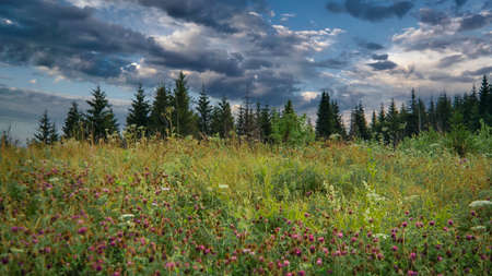 Majestic sunset in the mountains forest. Dramatic sky. Ural mountains.