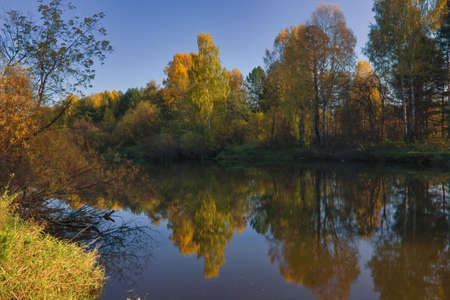 Autumn landscape, forest trees are reflected in calm river water against a background of blue sky and clouds.