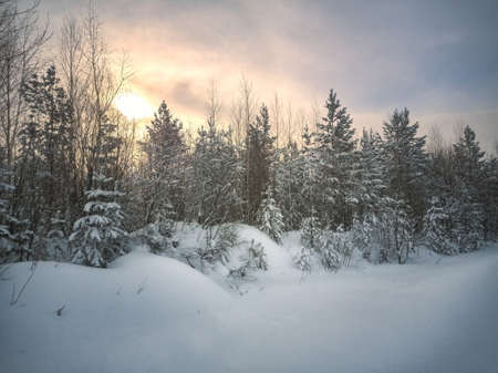 Winter landscape sunset in the forest with snowy field in the foreground. Scene of a beautiful sunset at field with forest at background. Stock fotó