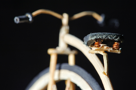 Miniature of wooden penny-farthing bicycle on black background. Macro handcraft detail shot of the bicycles seat. Old school bicycle with big wheel.