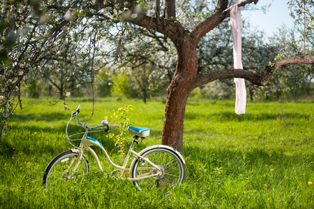 day flowering: Vintage bicycle standing in the fresh green grass under flowering tree on which hangs the nice shawl in the spring garden at the sunny day