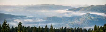 Wide amazing panorama of foggy mountain range. Morning with fog over mountain slopes, covered with spruce forest. Stock Photo