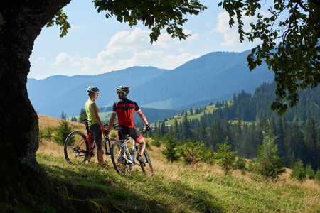 Young couple cyclists, man and woman standing with bicycles on grassy hill, holding hands, looking to each other under big green tree branch. View of Carpathian mountain range on the background