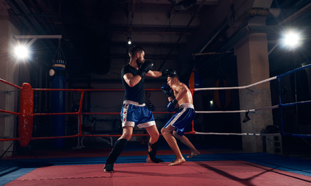 Two sporty boxers training kickboxing in the ring at the health club Banco de Imagens