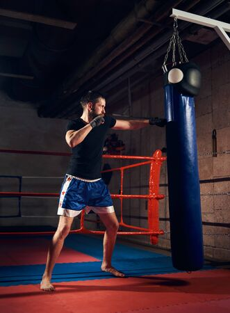 handsome male fighter training hard kickboxing and preparing for fight, kicking and punching heavy boxing bag near the ring at the sport club Imagens