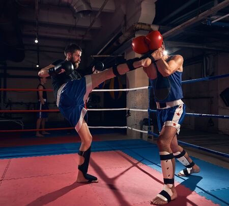 Handsome male boxer training kickboxing with sparring partner in the ring at the sport club Banco de Imagens