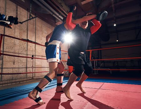 strong male sportsmen fighter exercising mma with his trainer in the ring at the health club