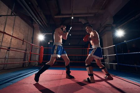 Attractive man fighter exercising kickboxing with sparring partner in the ring at the health club