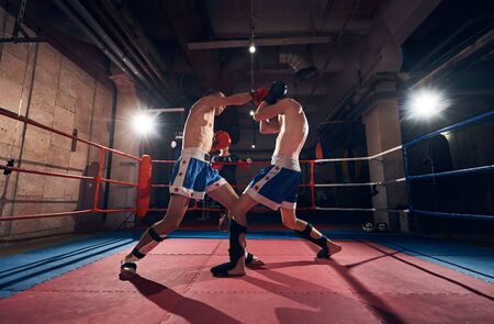 Two professional boxers training kickboxing in the ring at the health club Фото со стока