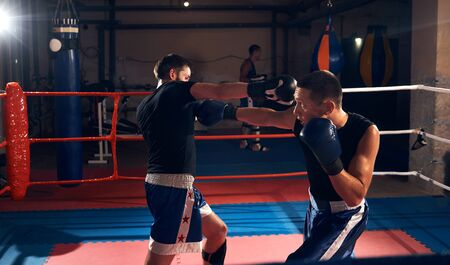 Two athlete sportsmen kickboxers practicing boxing, fighting in the ring at the sport club