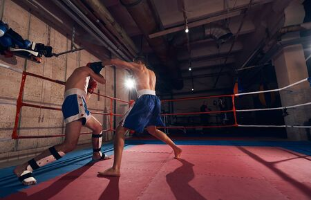 Two fit male boxers training kickboxing in the ring at the health club 版權商用圖片
