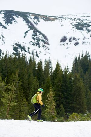 Snow-covered mountain and off-piste skier. Vertical snapshot for poster. Side view of male in helmet walking on ski along green coniferous forest at foot of mountain. Active healthy lifestyle