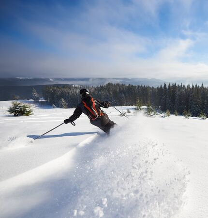 Extreme skiing down between low fir trees. Back view of male skier backpacker immersed in white snow powder. Backcountry, off-piste skiing concept. Winter wooded mountain landscape on background.