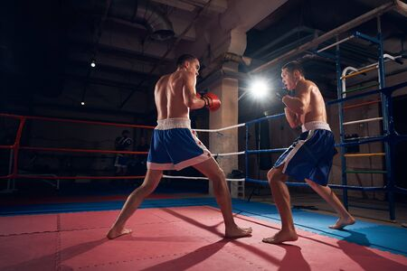 Two strong male sportsmen boxers fighting in the ring at the sport club
