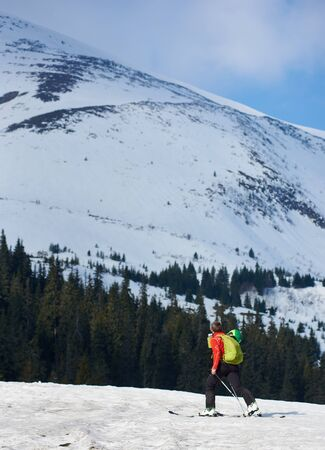 Male hiker traveling alone with backpack on skis on snowy valley on background of steep mountain slope and green spruce wood on frosty sunny winter day. Tourism, sport and exploration concept.
