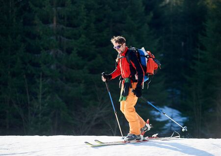 Smiling male with ski mountaineering climb towards the summit under the lights of a sun against forest background. Ski season and winter sports concept