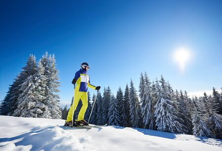 Skier woman stopping on wooded snow-covered mountain slope and watching at surrounding winter nature. Spending time out to travel, outdoor recreation and skiing. Colorful snapshot from low angle. Stok Fotoğraf