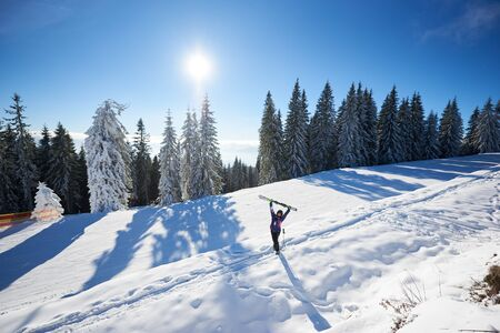 Happy woman with skis in center of amazing panoramic view of sky and forest. Snow-covered mountain hill in sunny day during winter vacation. Skier rejoicing with skis raising up in hands. General view