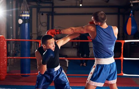 Two healthy boxers training boxing in the ring at the health club Stok Fotoğraf