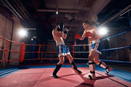 Two muscular male boxers training kickboxing in the ring at the sport club Stok Fotoğraf