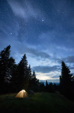 Vertical snapshot of a peaceful summer night in the mountains, magical sky full of stars over high tops of spruce trees and illuminated tent in the middle of mountain glade. Starry night concept