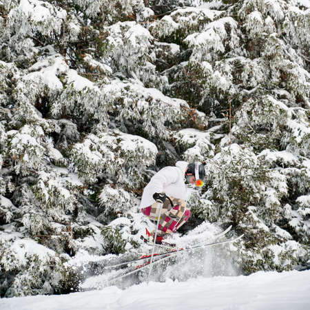 Skier in white jacket and helmet doing tricks in the mountains in winter season, jumping on slope merging with beautiful snowy spruce forest background. Side view. Concept of winter kinds of sport.