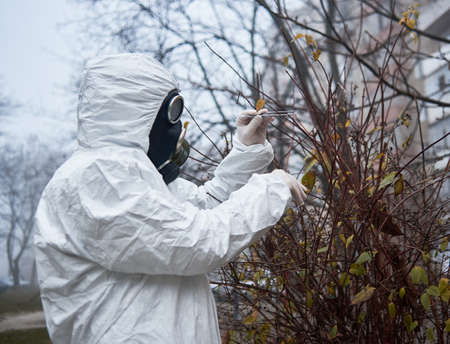 Ecologist in radiation suit gripping tree brunch with tweezers. Male environmentalist wearing white protective uniform, sterile gloves and gas mask. Concept of research and ecological problems.