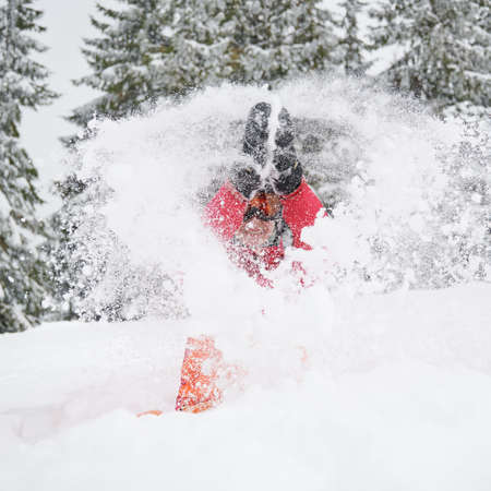 Happy moments at ski resort in the mountains. Woman in vivid ski suit sitting and playing with snow, throwing it up. Concept of winter entertainment 写真素材