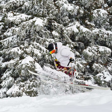 Male skier skiing on fresh powder snow with beautiful snowy trees on background. Man freerider in ski goggles making jump while sliding down snow-covered slopes. Concept of winter sports