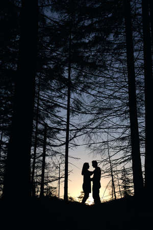 Silhouette of pair of lovers looking at each other under large pine trees at sunset. Orange gradient sunset. Romantic evening in the forest Stock Photo