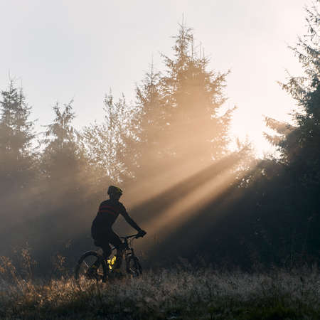 Silhouette of man in cycling suit riding bicycle in forest illuminated by morning sunlight. Male bicyclist cycling on grassy hill in the morning. Concept of sport, bicycling and active leisure.