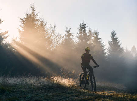 Man cyclist in cycling suit riding bicycle near forest illuminated by morning sunlight. Bicyclist cycling on grassy hill in the morning. Concept of sport, bicycling and active leisure.