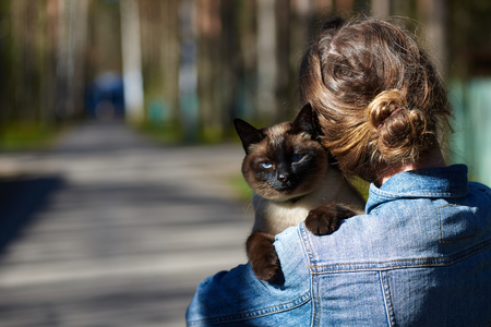 Girl walking with cat outdoor. copy space for advertising animal goods. Concept for promotion pet products. Relaxation time in love. Friendship for a life.